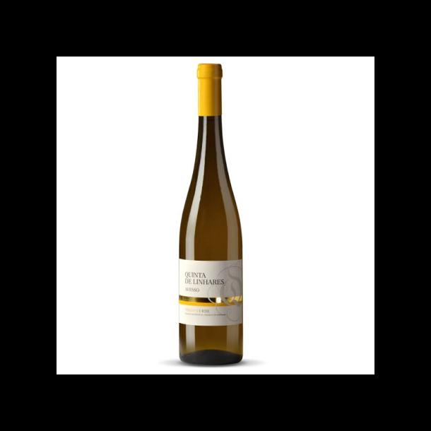 Vinho Verde Avesso (Quinta de Linhares)