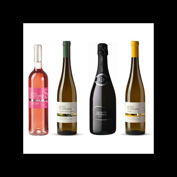 Vinho Verde Type-smagning