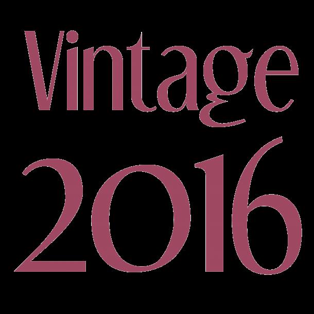 Vintage 2016 - Samletilbud